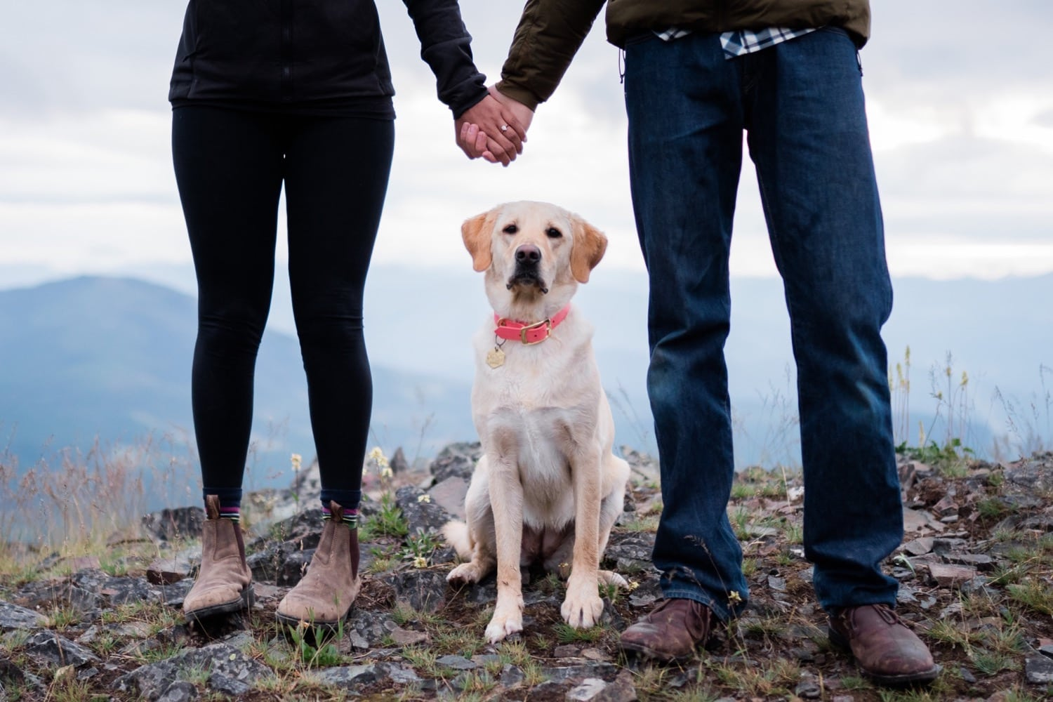 A detail shot of the engaged couple holding hands with the dog sitting between them looking at the camera